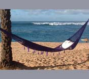 Purple Nylon Hammock
