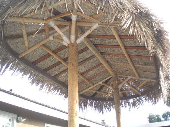 Palapa Structures Palapas Two Pole Palm